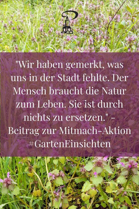 Beitrag zur Mitmach-Aktion #GartenEinsichten im Altenburger Land