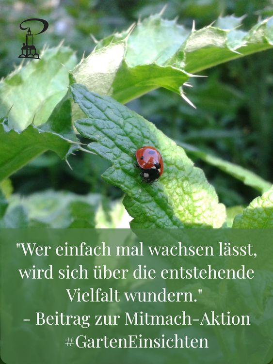Einfach mal wachsen lassen - Marienkäfer auf Blatt mit Zitat aus der Mitmach-Aktion #GartenEinsichten