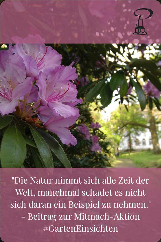Pin #GartenEinsichten - Die Natur nimmt sich alle Zeit der Welt