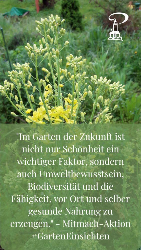 Im Garten der Zukunft ist nicht nur Schönheit ein Faktor - Mitmach-Aktion #GartenEinsichten im Museum Burg Posterstein
