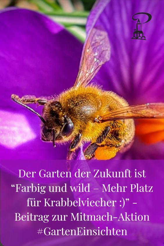 Der Garten der Zukunft ist farbig und wild. Mitmach-Aktion #GartenEinsichten