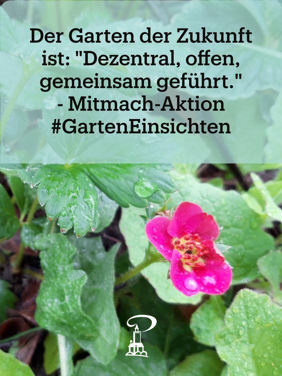 Beitrag zur Mitmach-Aktion #GartenEinsichten 2021 im Museum Burg Posterstein