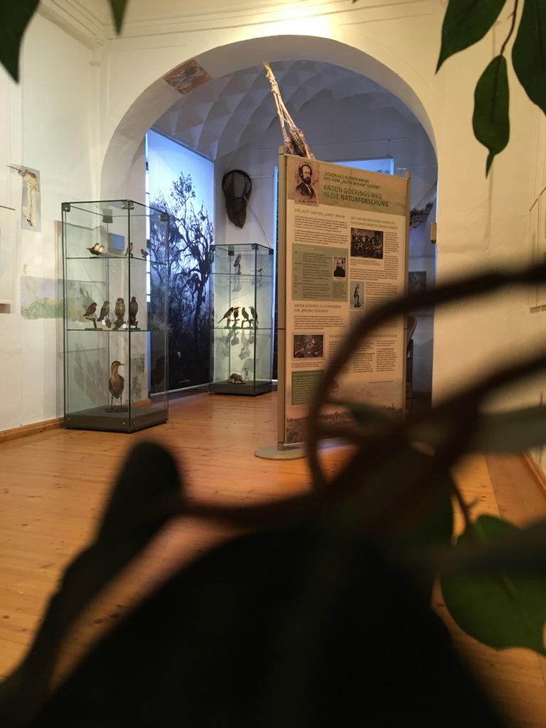 Ausstellung #Humboldt4 im Museum Burg Posterstein 2019