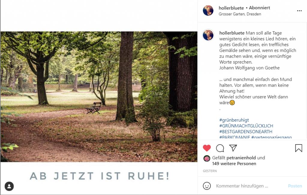 Screenshot eines #GartemEinsichten-Beitrags von @hollerbluete auf Instagram