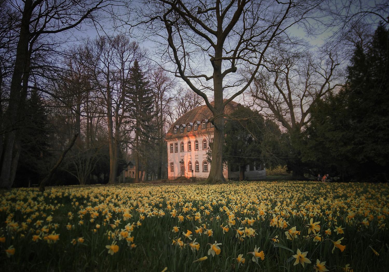 """#GartenEinsichten: """"Wie der Garten, so der Gärtner"""" – Gartenkultur als Spiegel der Gesellschaft"""