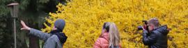 Instawalk zur Ausstellung Versteckte Orte: Instagramer auf #Schlössersafari in Mitteldeutschland